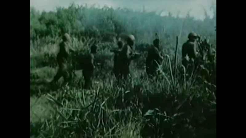 11 Vietnam War