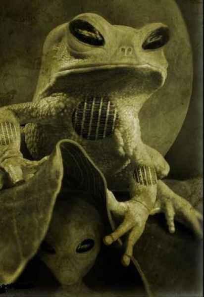 alienfrog.jpg
