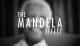 El Efecto Mandela, Fusión de las Líneas de Tiempo y Alienígenas Ancestrales del Futuro